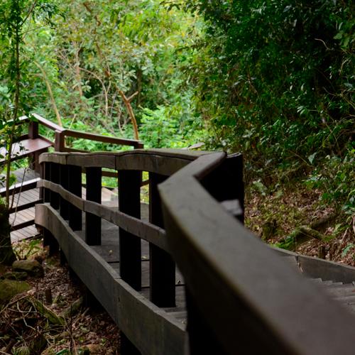 Natureza dos Lotes e Terrenos do Condomínio Blumen Haus em Nova Petrópolis na Serra Gaúcha